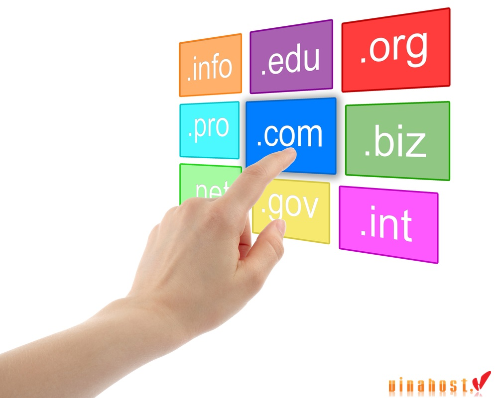 vinahost-how-to-classify-vietnam-domain-name-1