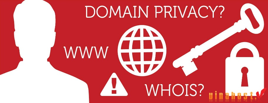 vinahost-what-is-vietnam-domain-whois-1