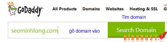 vinahost-how-to-CHECK-DOMAIN-VIETNAM-before-registry-6
